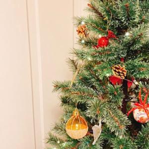 明日は クリスマスイベントです♪