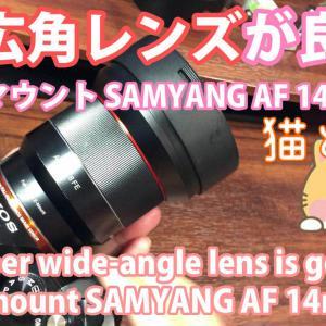 SAMYANG 単焦点超広角レンズ AF 14mm F2.8 ソニー α7Eマウントフルサイズ