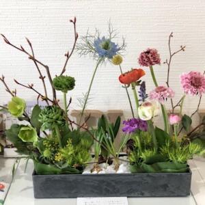 お花の似合う教室??? 春がきた!
