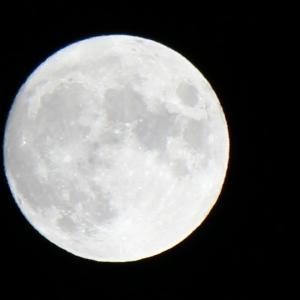 健やかな月
