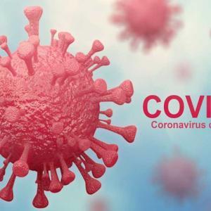 ワクチンの「7月から治験が開始」の意味⁉️