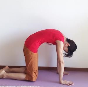 お腹を引っ込めたければ、四つ這いで手首が痛くならない姿勢になるべし。意味分からなくてもOK