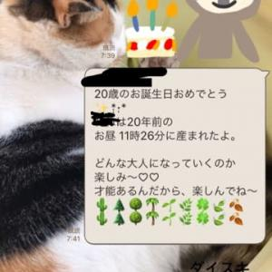 祝・二十歳♡