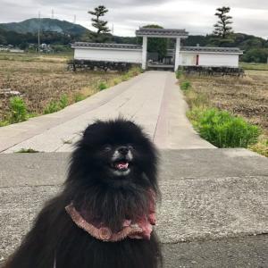 1年ぶりの旅行♫ 【1日目】静岡