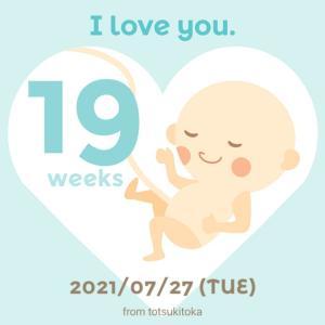 【19w0d】ついに19週!職場の同僚へ妊娠報告
