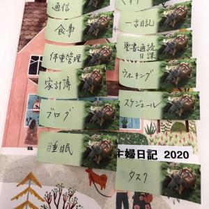 【2020・手帳の下準備(7)】「主婦日記」のマンスリー、来年は「出納帳」に。 & 鎖骨骨折生活40日目
