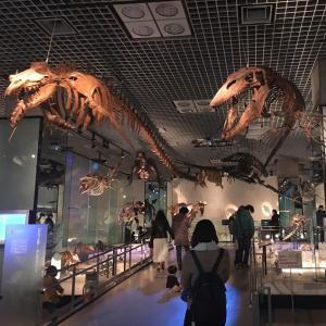 国立科学博物館。上野。