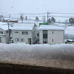 雪なのでローラーでポジション調整
