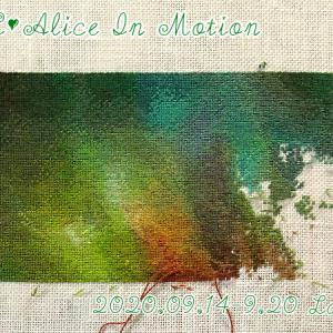【TC】Alice In Motion 5枚目半分くらい?