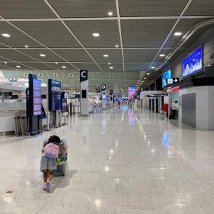 さよなら日本、が香港帰れないかも!?の危機