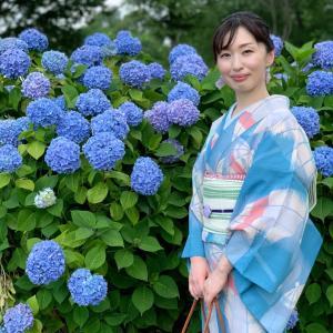 【着物コーデ】紫陽花ヘッドドレスでお出かけ
