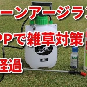 グリーンアージランとMCPPで雑草対策 7日経