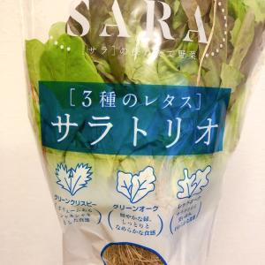 サラトリオっていう便利な野菜