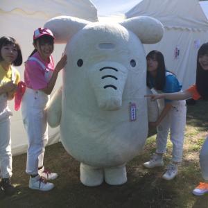 千葉県協同組合フェスティバル、良い天気 by kurumi