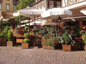 【フランスの旅】ブルゴーニュ地方へ その13 美食の街コルマール