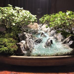ジオラマ盆栽 作り方(渓流編6)