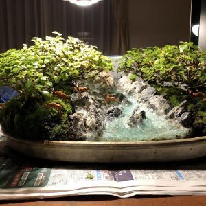 ジオラマ盆栽 作り方(渓流編7)