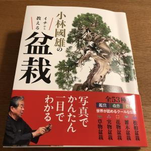 盆栽のおすすめ本4