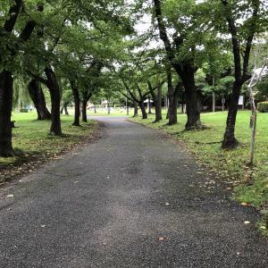 チリメン、ハツユキ、マルスグリと散歩道