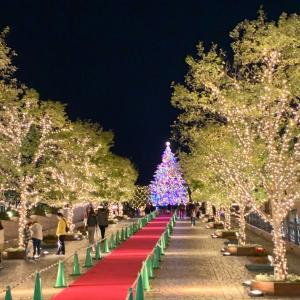 恵比寿ガーデンプレイスイルミネーション&週末のレッスン風景♡