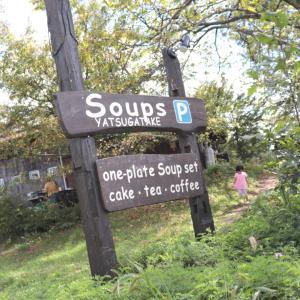 秋の犬旅!スープ八ヶ岳