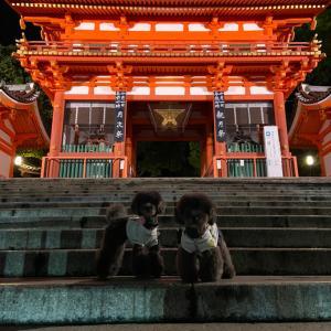 秋の犬旅!京都料理でディナー編