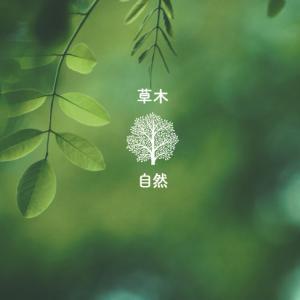 【勝手に遠隔声診断】あなたの声はこんな声? 草木自然Ver.
