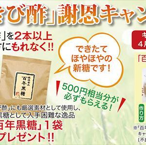 きび酢キャンペーンスタート!
