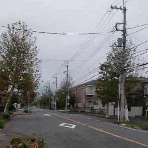 台風19号の被害も無く、平常通り施術しております。