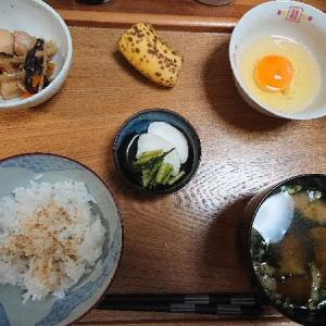 (R3)水無月3日 カマスの塩焼きに【芋】 日南娘 にて