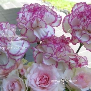 ♪お花の中では一番好きな花