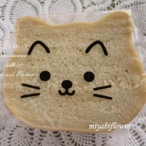 白ねこに変身したパン、さらに変身