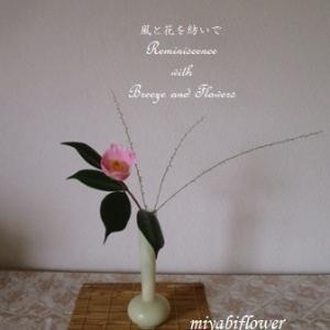 椿 西王母を生ける  引き算の生け花