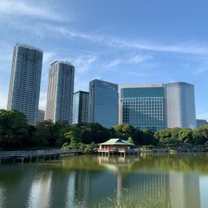 東京散歩、都会のオアシスへ