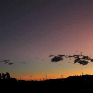 明るい明日が来ますように。。。