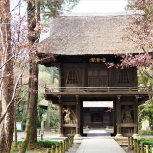 静かな冬の平林寺。。。