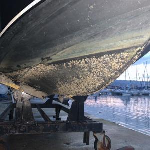 【記録用】ボート船底清掃 塗装