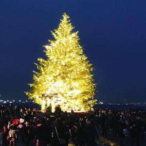 クリスマス迄あとひと月足らず…やっぱり二人で過ごしたい⁉︎