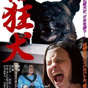 「VS狂犬」、車いすの少女が狂犬病にかかった犬に追いかけられる!