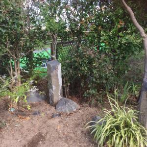 コスモス園玄関の植え替え