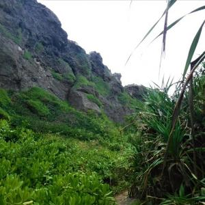 多分、観光客が立ち寄らないであろう東平安名崎の海辺を歩く