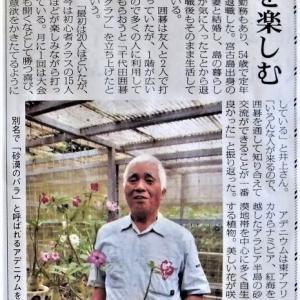 井上さんの事ーまさに「島の宝」「千代田囲碁クラブ」「貝の展示館」 多彩な花木類