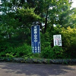 久しぶりにかっての通勤コースを歩くー京都、柳谷観音