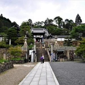 京都でアジサイを見るー「柳谷観音あじさいウィーク」  嵐山風景
