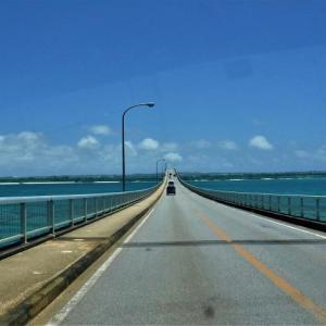 来間島のトレーラハウスを見る 第3給油所前のホウオウボク 沖縄地方は梅雨明け