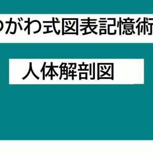 動画でデキる!受験、入試、試験、医療、理科、生物、漢字の勉強をやる気アップ