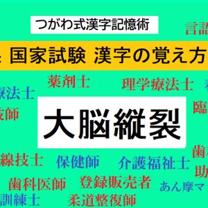 大脳縦裂とは? YouTube動画で覚えられる!医療系 国家試験 つがわ式漢字記憶術