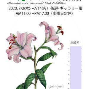 第14回野の花ボタニカルアート倶楽部展が始まりました~!