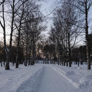 雪道は長靴が歩きやすかった~(^^)d
