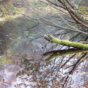 雨飾温泉から登る秋の雨飾山     Mount Amakazari in Myōkō-Togakushi Renzan National Park